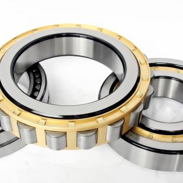 NUP307 Cylindrical Roller Bearing 35*80*21mm
