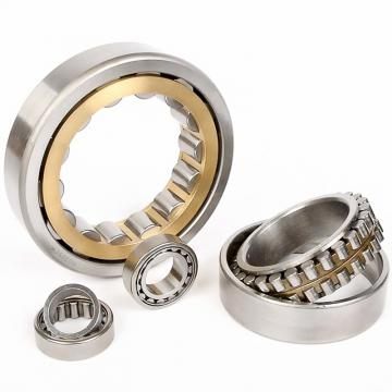 SL19 2316 Cylindrical Roller Bearing Size 80x170x58mm SL192316